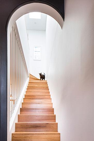 Birchgrove (Sydney) Terrace House Renovations by Architect Fin