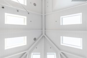 Skylights in cathedral ceiling in Mosman Federation House renovation